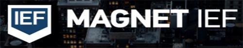 Magnet-IEF
